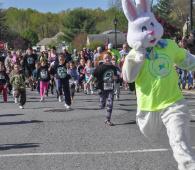 rabbit-run-2